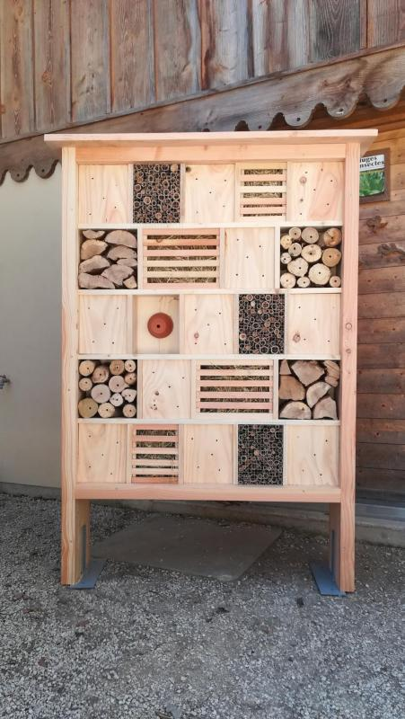 Armoire a insectes 1