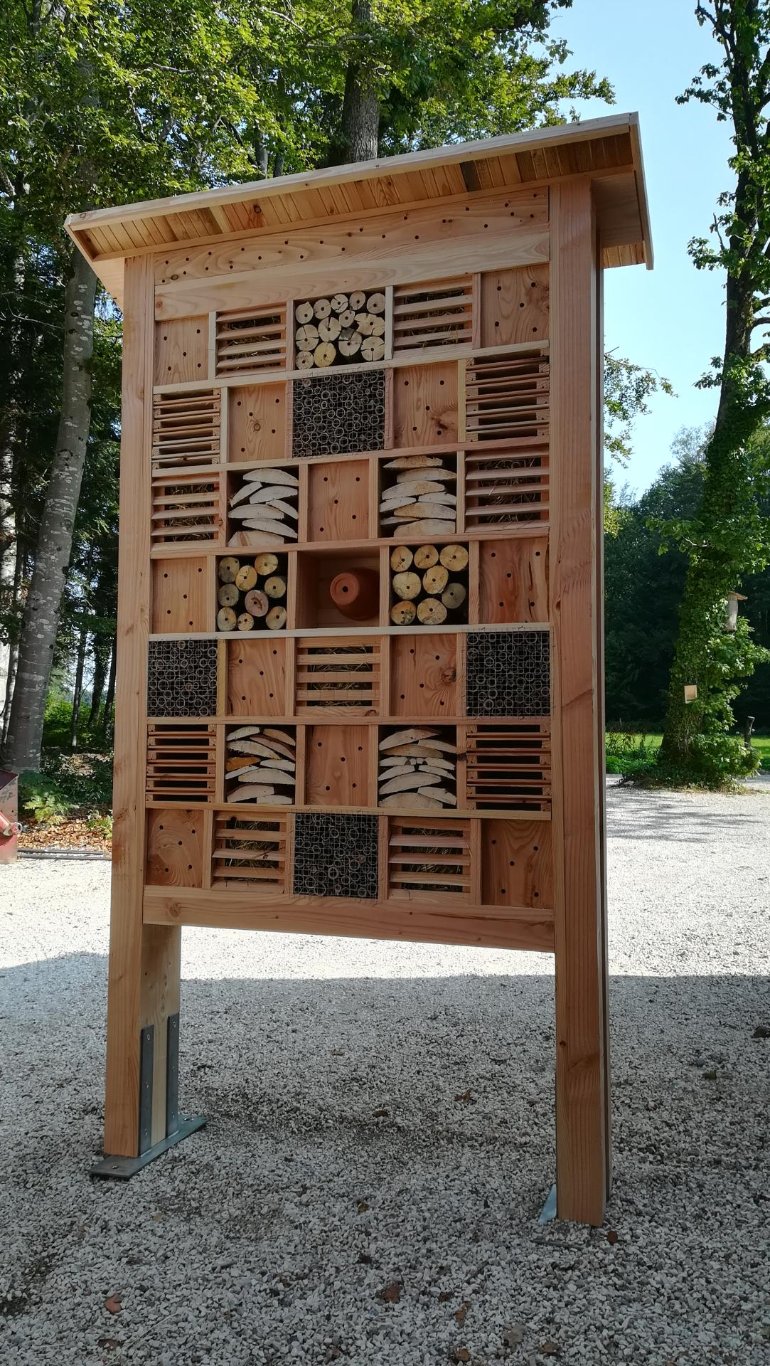 Armoire a insectes