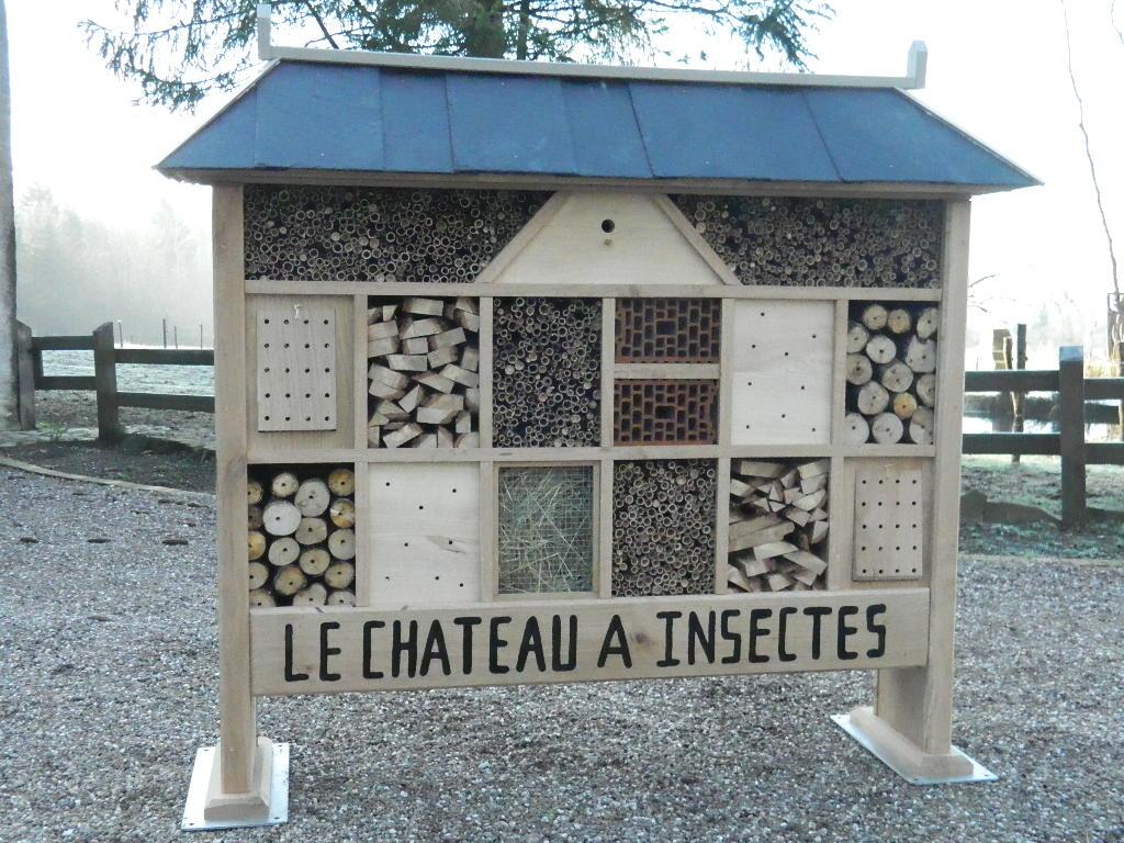 chateau à insectes