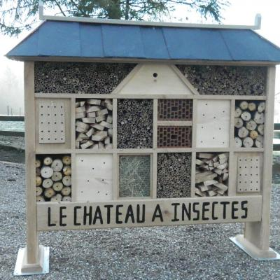 Chateau a insectes